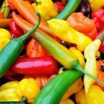 Maigrir : les 50 meilleurs aliments brûle-graisses
