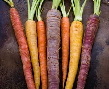 Aliment réconfort no.6: Carotte, patate douce et courge