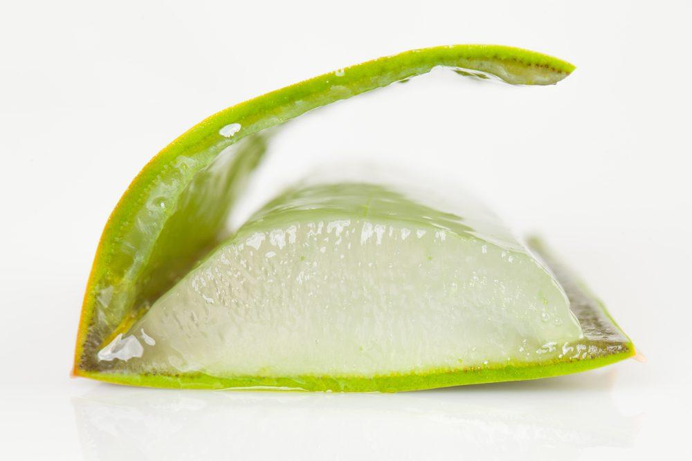 Le gel et le latex de l'aloe vera