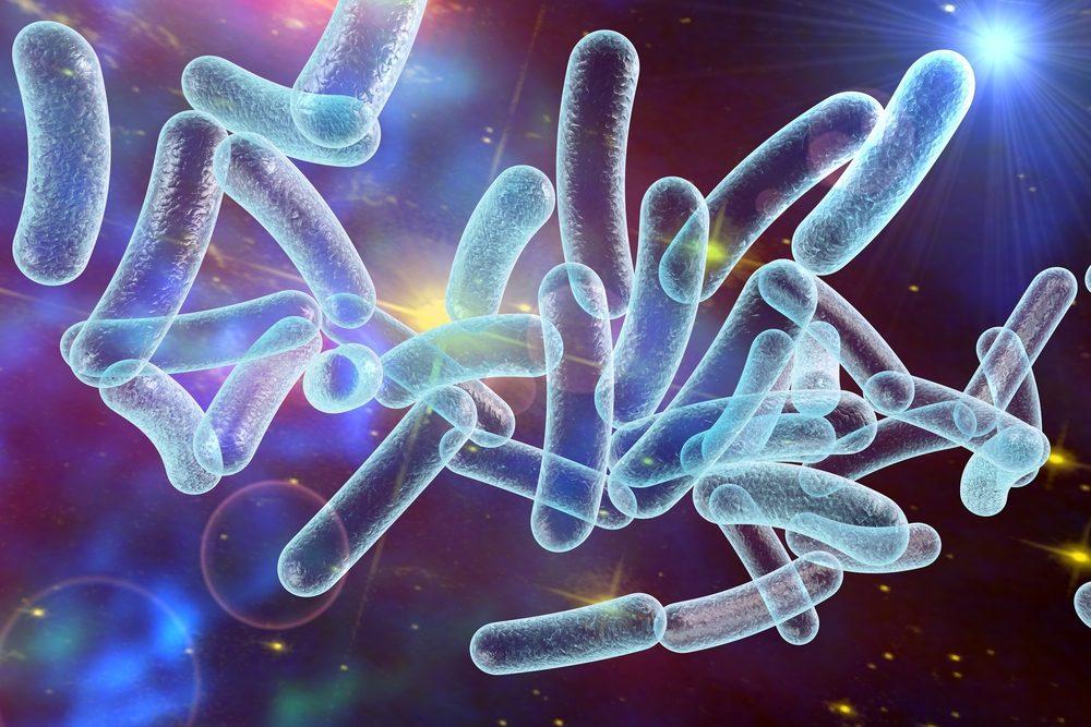 Faits et statistiques sur les germes et microbes.