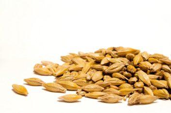 Les céréales contrôlent votre glycémie.