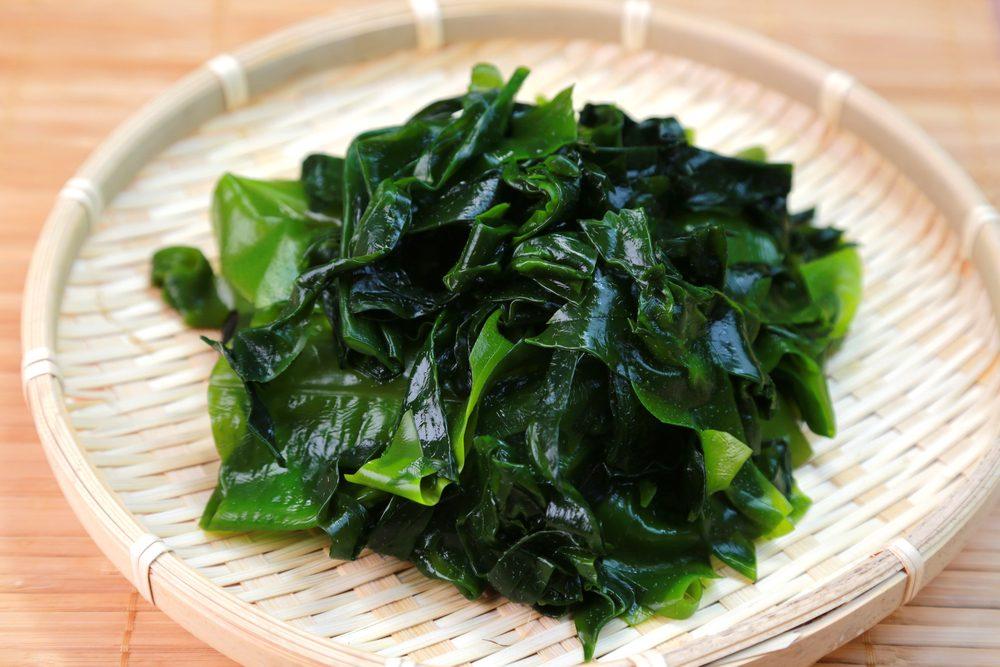 Découvrez les bienfaits des algues