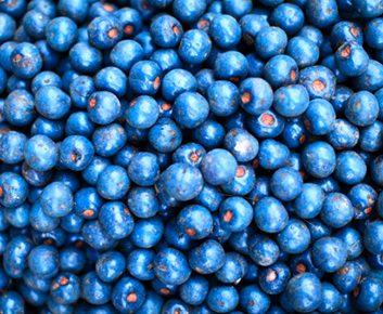 Fruits équilibrés en fructose