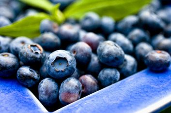 Consommez des bleuets (riches en antioxydants) tous les jours.