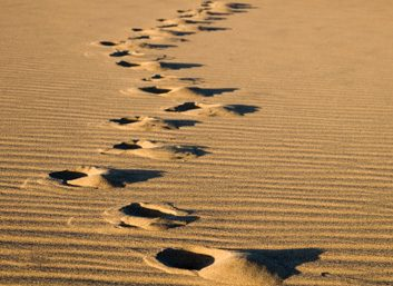 6. Choisissez de revenir sur la bonne voie