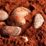 Les nouveaux ingrédients des produits de santé naturels