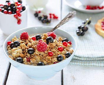 Céréales allégées ou sans fibres