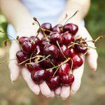 Cerises: 10 bienfaits et vertus santé