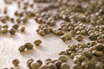 Le classique: la boisson de soya. La nouvelle tendance: la boisson de chanvre.