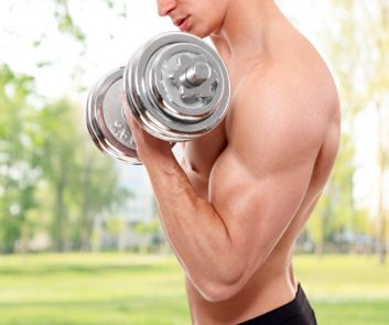 Flexion-extension des biceps