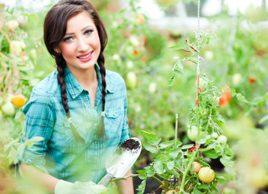 Jardin: Les 5 meilleurs aliments à cultiver