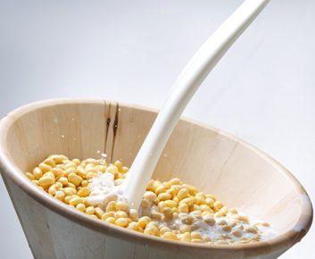 Le lait de soja