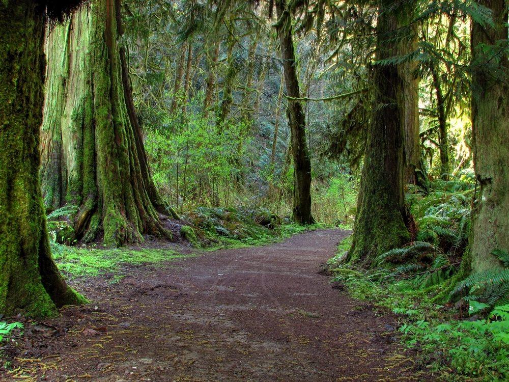 Développer sa spiritualité par le contact avec la nature