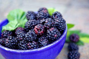 3. Les fruits de couleur pourpre peuvent aider à contrer les maladies liés au vieillissement.