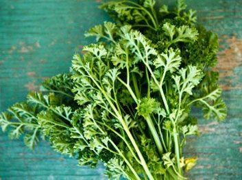 Les herbes vous aident à prévenir le cancer du sein.