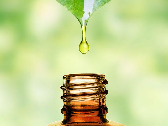 Des produits de la peau inspirés de la nature