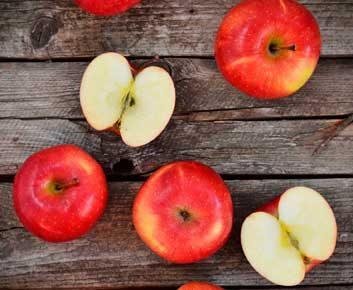 La pomme ralentit le vieillissement prématuré.
