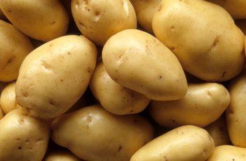1. Potassium