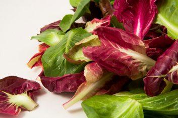 Une entrée de salade tiède