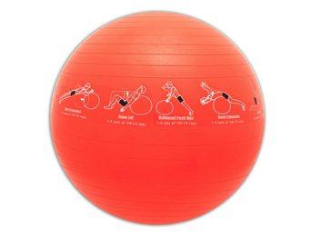 3. Le TRAINERball