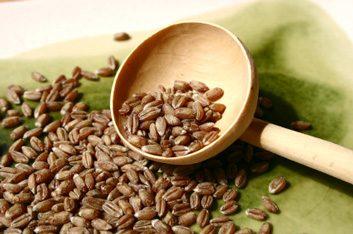 Les céréales combattent les radicaux libres.