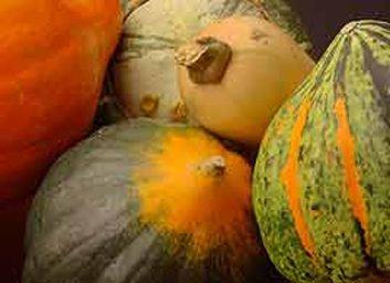 5. Les légumes orange revitalisent votre système immunitaire