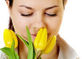 Êtes-vous allergique au pollen?
