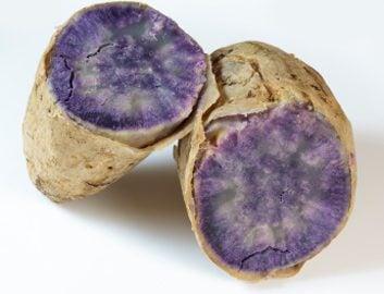 8. Pomme de terre vitelotte