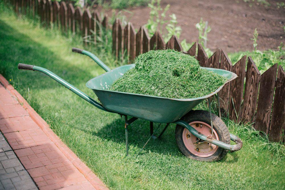 nos trucs naturels pour liminer les mauvaises herbes. Black Bedroom Furniture Sets. Home Design Ideas
