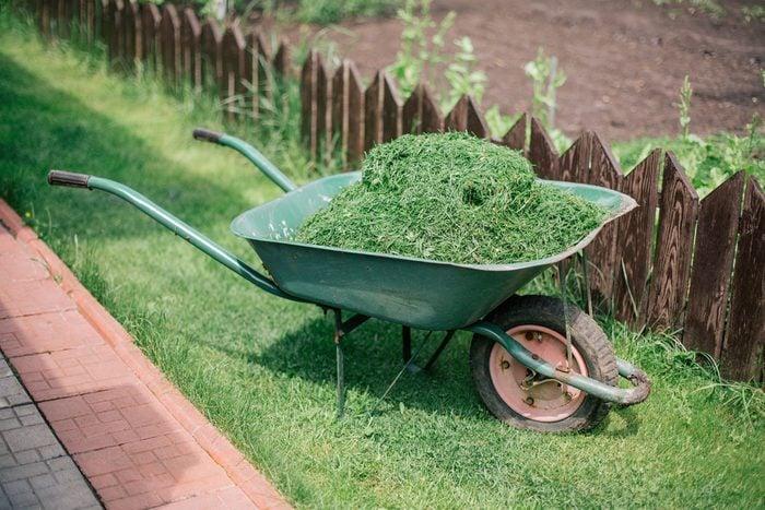 Recycler le gazon comme traitement contre les mauvaises herbes