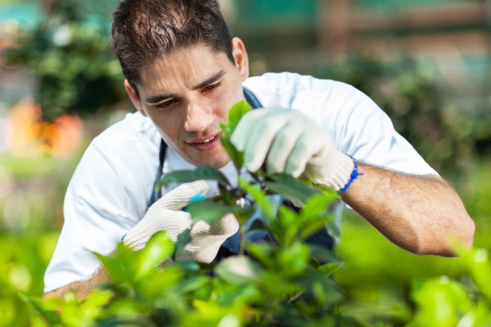 jardinage-meilleure-activite-physique-sante