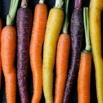 Top 10 des meilleurs légumes pour la santé
