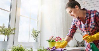 Les meilleurs produits d'entretien efficaces et écologiques.