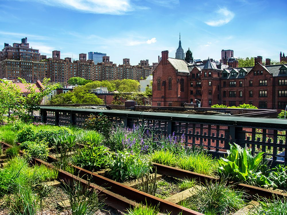Quoi faire à new york: se promener le long du High Line Park.