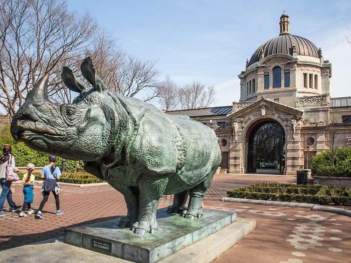 Quoi faire à new york: visiter le zoo du Bronx.