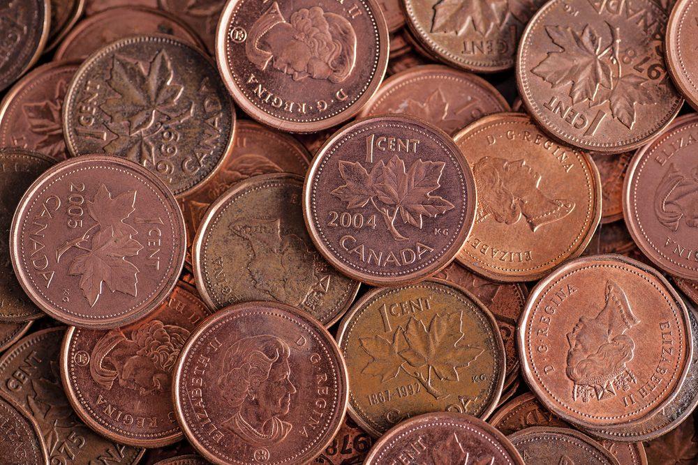 Le cuivre de la monnaie aide à prolonger la vie des fleurs.