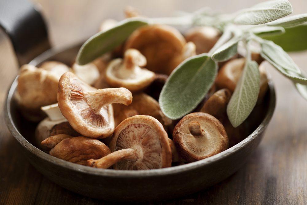 Champignons asiatiques et shiitake : bienfaits et vertus santé.