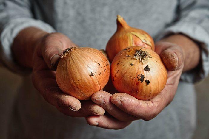 Les bienfaits des oignons réduisent l'hypertension artérielle.
