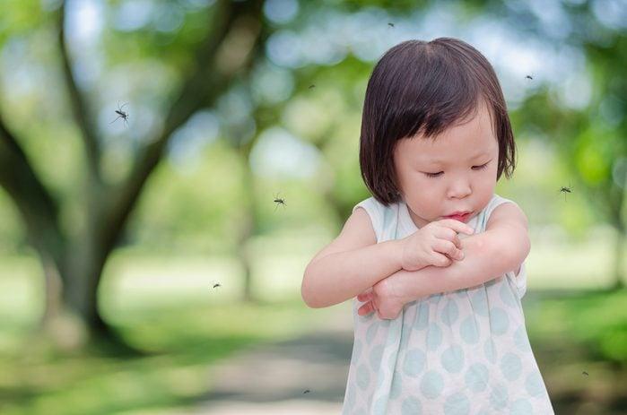 Il existe des suppléments pour soulager les piqûres d'insectes