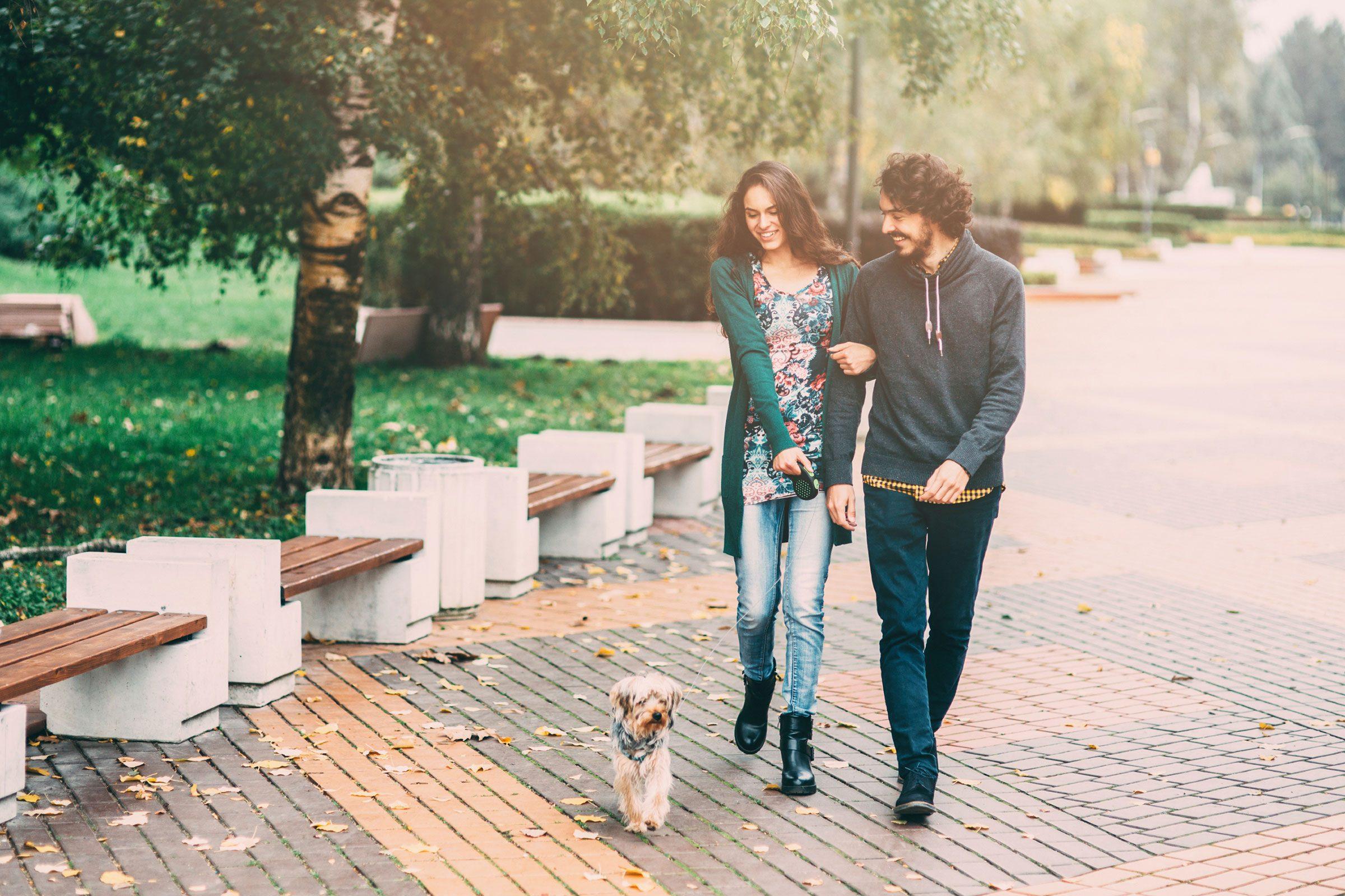 couple-heureux-apres-travail-promenade-chien