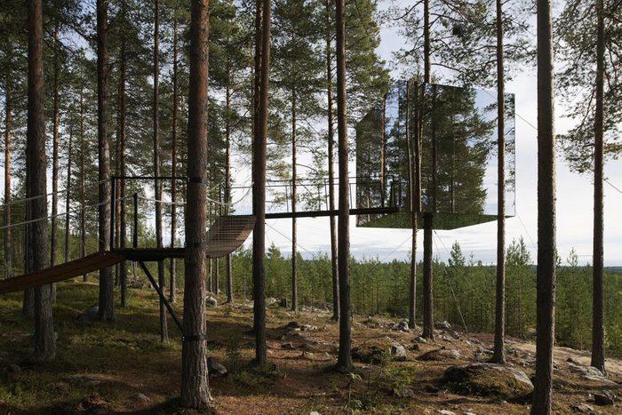 Image représentant l'hôtel niché dans un arbre.