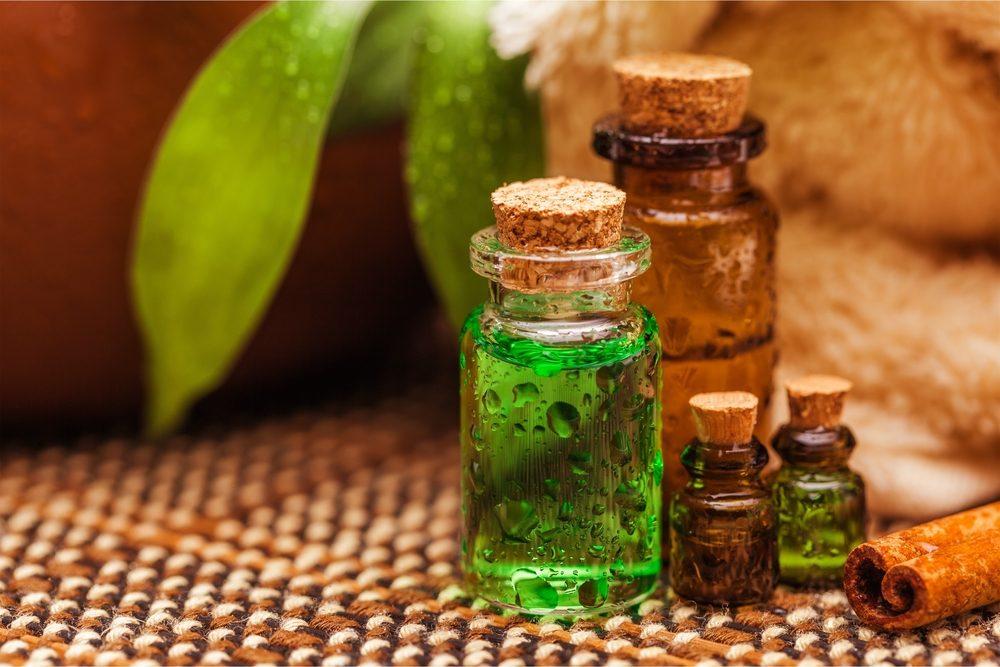 Arbre th l 39 huile essentielle aux nombreux bienfaits et - L huile essentielle d arbre a the ...