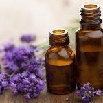 Soulager les piqûres d'insectes: 6 remèdes naturels et suppléments efficaces