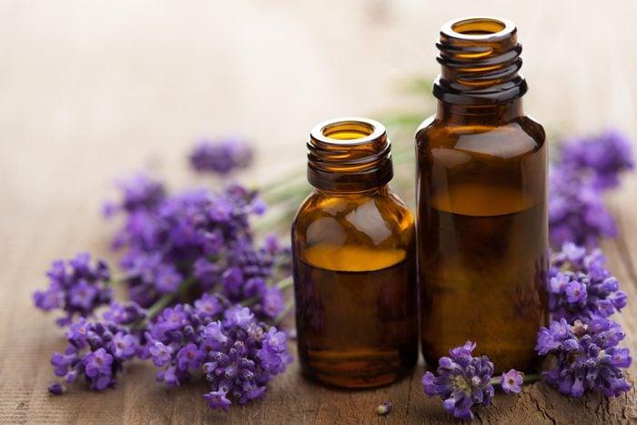 L'huile de lavande peut soulager les piqûres d'insectes