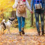 Marche: 10 trucs et conseils pour brûler plus de calories en marchant