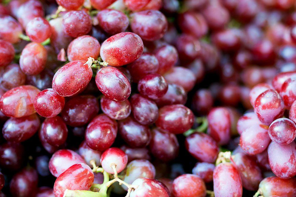 L'extrait de pépins de raisin et ses bienfaits sur les vaisseaux sanguins.