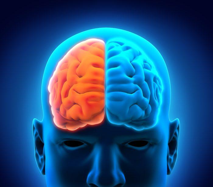 La vérité sur le cerveau humain