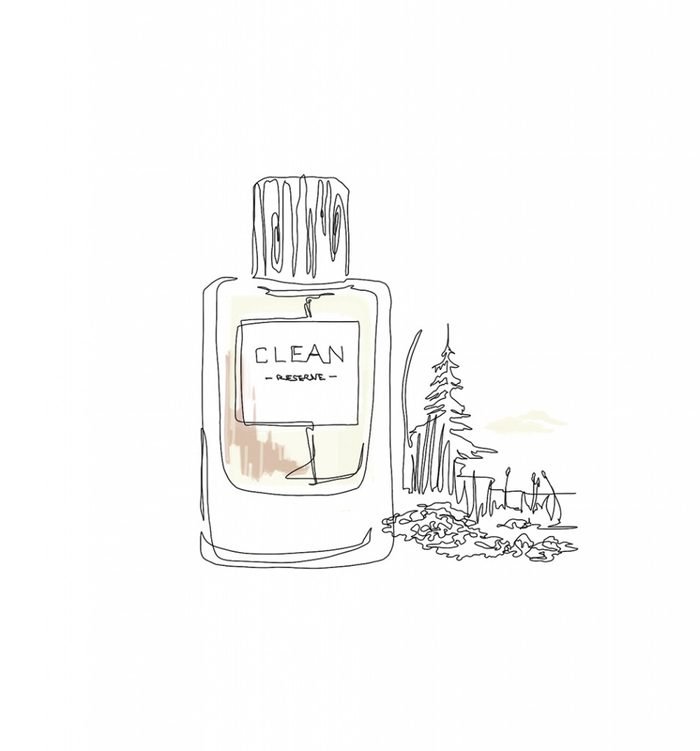 Parfums aux arômes de jardin: Parfum de cèdre.