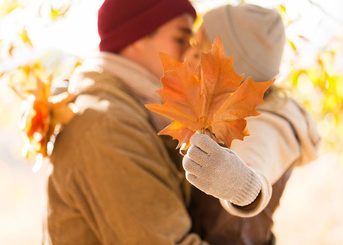 Si vous cherchez une activité à faire en famille, ramassez des feuilles pour en faire un projet artistique.
