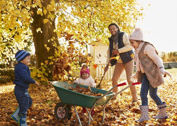 Idées d'activité à faire en famille: Ratissez les feuilles du jardin.